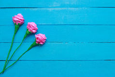 Fresh roses flowers in ray of light on turquoise painted wooden background. Selective focus. Place for text. Fresh roses flowers in ray of light on turquoise Royalty Free Stock Photos