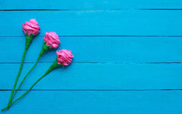 Fresh roses flowers in ray of light on turquoise painted wooden background. Selective focus. Place for text. Fresh roses flowers in ray of light on turquoise Stock Images