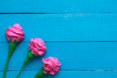 Fresh roses flowers in ray of light on turquoise painted wooden background. Selective focus. Place for text. Fresh roses flowers in ray of light on turquoise Stock Image