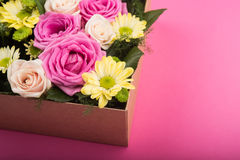 Fresh roses in gift box Stock Photos
