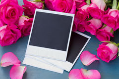 Fresh roses with instant photos Royalty Free Stock Images