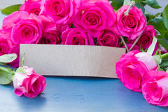 Fresh roses with tag Stock Images