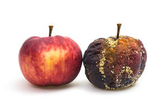 Fresh and rotten apple Royalty Free Stock Photos