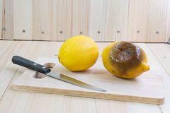 Fresh and rotten lemon put on chopping block Royalty Free Stock Images