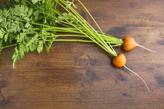 Fresh Round Carrots Stock Photos
