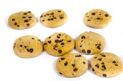 Fresh round sweet chocolate chip cookie`s in the sun. A cookie is a baked or cooked food that is small, flat and sweet. It usually contains flour, sugar and some Royalty Free Stock Photography