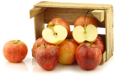 Fresh royal gala apples and a cut one Royalty Free Stock Photography