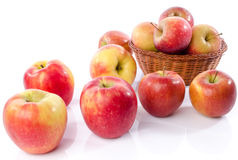 Fresh royal gala apples Royalty Free Stock Images