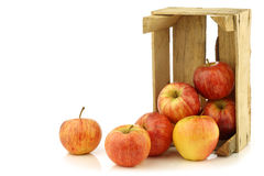 Fresh royal gala apples in a wooden crate Stock Image