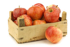 Fresh royal gala apples in a wooden crate Royalty Free Stock Photo