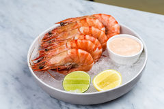 Fresh royal prawns with lemon and sauce. Served with the crushed ice Stock Images