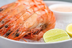 Fresh royal prawns with lemon and sauce. Served with the crushed ice Royalty Free Stock Photos