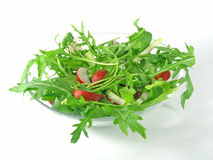 Fresh rucola Stock Images