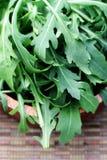 Fresh rucola Royalty Free Stock Image