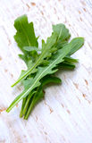 Fresh rucola Royalty Free Stock Photos