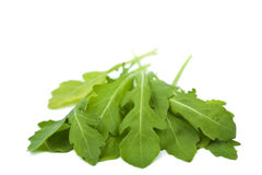 Fresh rucola isolated Royalty Free Stock Photos