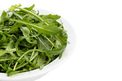 Fresh rucola leaves in a bowl Stock Photography