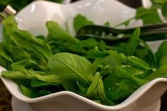 Fresh rucola leaves close-up in a white bowl royalty free stock image