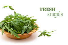 Fresh rucola. Royalty Free Stock Photos