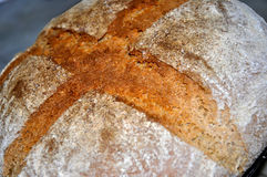 Fresh rustic bread. stock images