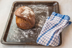Fresh rye bread on the French recipe on dripping pan Royalty Free Stock Photos