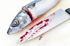 Fresh saba fish and chef's knife Stock Photos