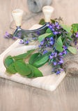 Fresh sage leaves, blossoms, wooden cutting board Stock Images