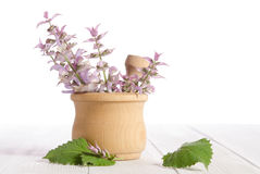 Fresh sage in a mortar on wooden table Royalty Free Stock Images