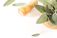 Fresh sage in  wooden mortar with pestle on withe background. Royalty Free Stock Photos