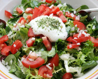 Fresh salad. A fresh salad with tomatoes and onions Stock Photo