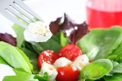 Fresh salad Royalty Free Stock Photos