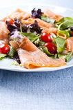 Fresh salad. Fresh smoked salmon salad with lettuce tomato and dressing royalty free stock photography