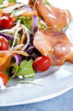 Fresh salad. Fresh smoked salmon salad with lettuce tomato and dressing stock images