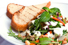 Fresh salad. With bread on a plate Stock Photography