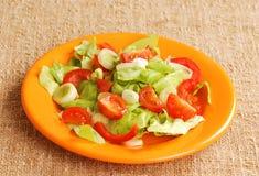 Fresh salad Stock Photography