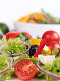 Fresh salad Royalty Free Stock Photo
