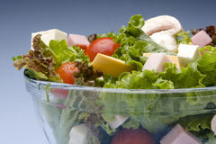 Fresh salad. With lettuce, tomato, cheese, ham and mushroom in a glass bowl royalty free stock photography