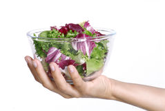Fresh salad. Stock Photos