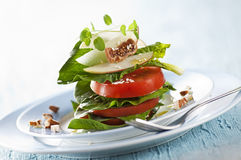 Free Fresh Salad Royalty Free Stock Images - 24455499
