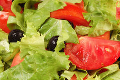 Fresh salad. Salad in the glass plate Royalty Free Stock Photography