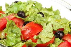 Fresh salad. Salad in the glass plate close up Royalty Free Stock Image