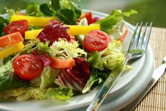 Fresh Salad. Fresh crispy salad on a plate royalty free stock photo
