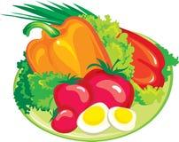 Fresh salad. Illustration of fresh vegetables: tomato, paprika, lettuce Stock Photos