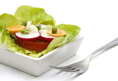 Fresh salad. Mixed vegetables in a whitw plate Royalty Free Stock Image