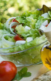 Fresh salad - appetizer Royalty Free Stock Photography