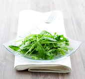 Fresh salad with arugula Stock Photography