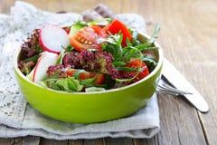 Fresh salad with arugula, radish Stock Images