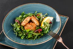 Fresh salad with arugula, spinach, avocado and vegetable cutlets with herbs, garnished with lemon in plate over dark background. Healthy vegan food, clean royalty free stock image