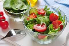 Fresh salad with arugula Stock Images