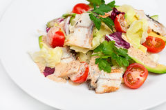 The fresh salad with avocado and smoked eel. On the plate. Close up view Royalty Free Stock Photo